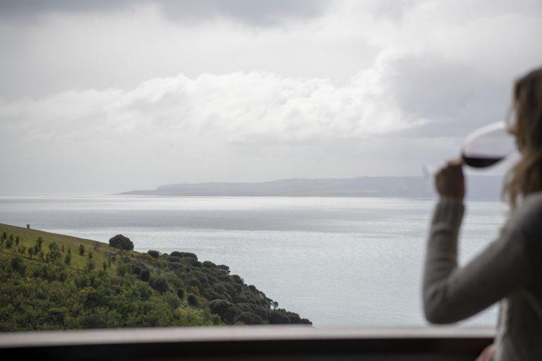 Dudley Wines looking to Fleurieu Peninsula - Walk Kangaroo Island.jpg